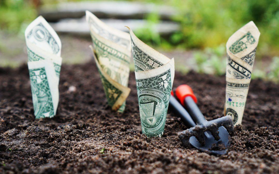 Peer-to-peer lending keeps  savings from gathering dust